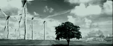 environnement-ecologique.jpg